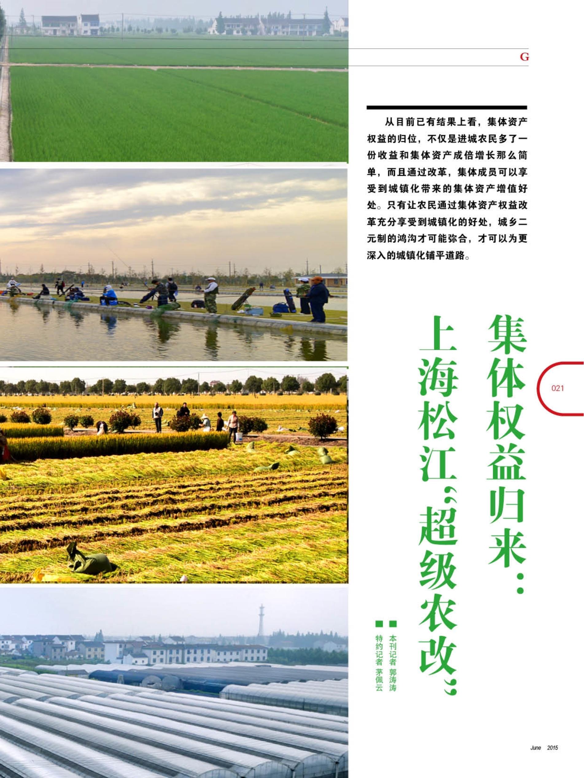"""集体权益归来:上海松江""""超级农改"""""""