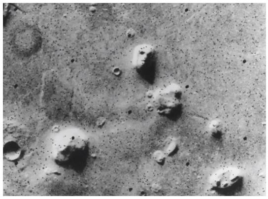 """火星上有蘑菇生长?""""真像""""中的""""真相"""""""