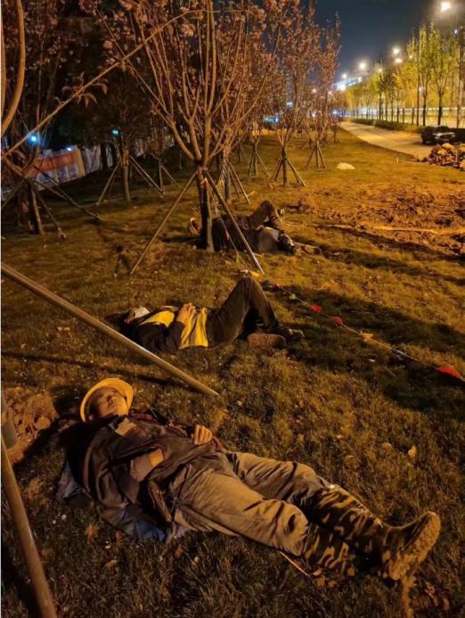 中国燃气:扎根南京16载,用升腾的蓝焰守护人民的幸福生活